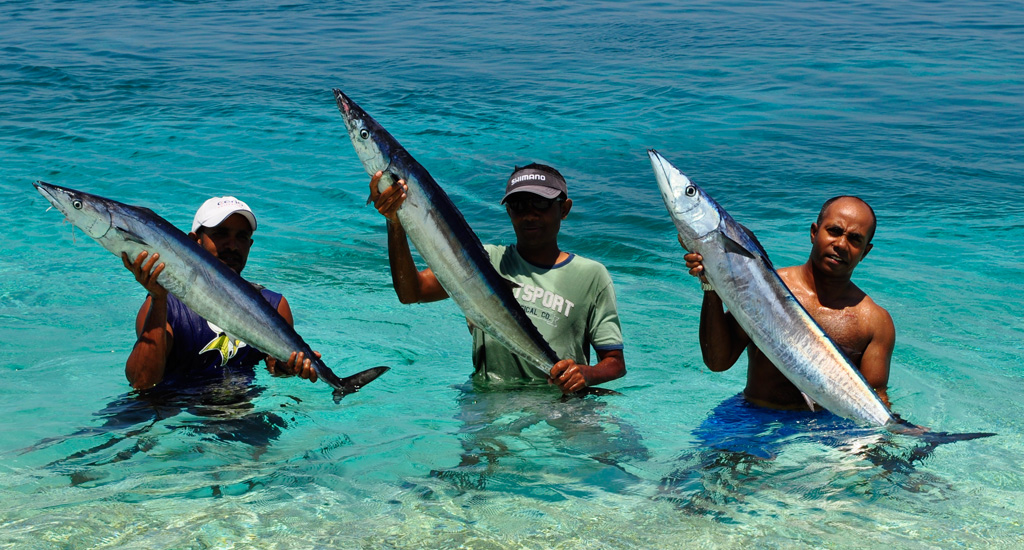 Addu Sport Fishing Maldives